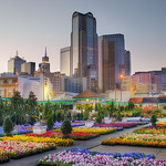 2014 MBA Internships in Dallas, TX
