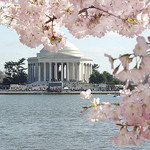 2013 Theatre Internships in Washington, DC